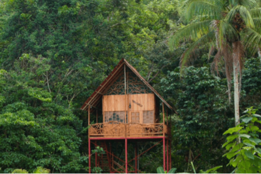 The 10 best Airbnb Treehouse Destinations in the World